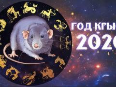 Шуточный гороскоп в стихах на 2020 год для всех знаков зодиака