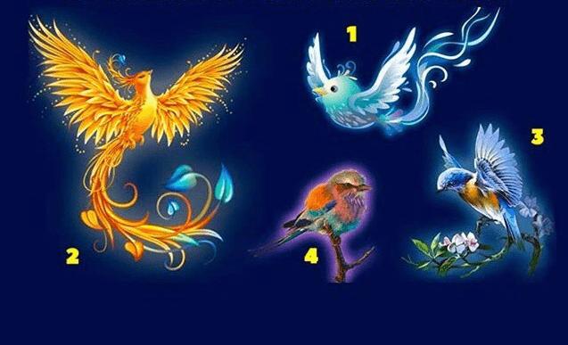 Тест: выберите свою птицу удачи