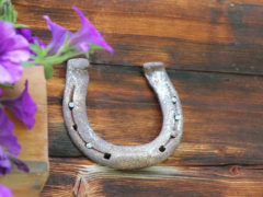 Случайные находки: какие найденные предметы сулят счастливую жизнь?